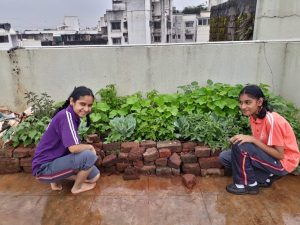 School in Pune has terrace garden blossoming on dry leaves and nirmalya from 2000 households