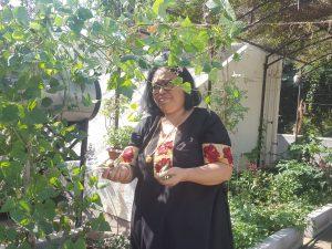 How to create a garden, Part 9